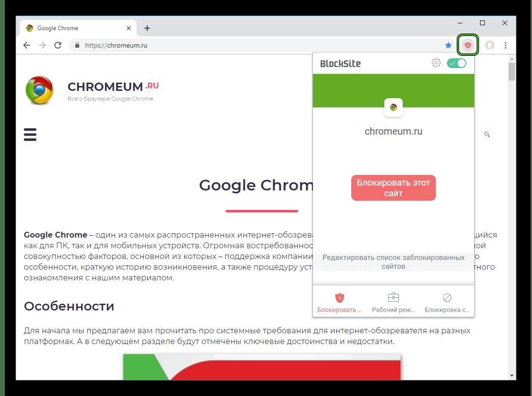 Общий вид плагина Block Site