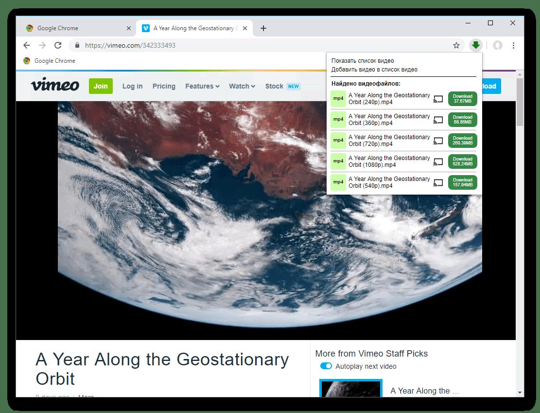 Окно загрузки у расширения Video Downloader professional для Google Chrome