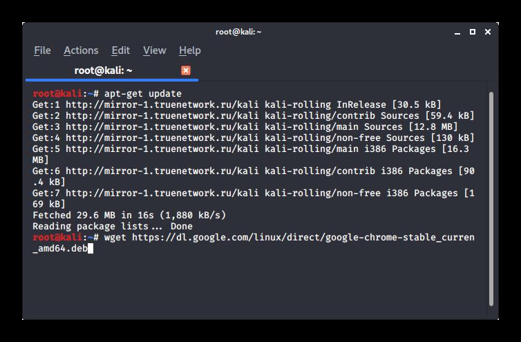 Загрузка Google Chrome в терминале Kali Linux